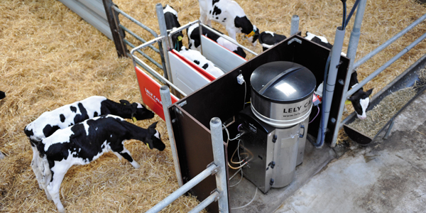Lely Calm Automtic Calf Feeder